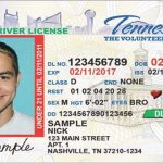 Drivers License Requirements Tennessee